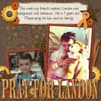 Pray for Landon